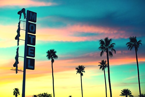 sunset arizona usa tree neon unitedstates fav50 unitedstatesofamerica motel palmtree diver mesa fav10 fav25 starlitemotel fav100 pwlandscape
