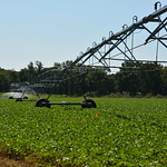 UD Irrigation Field Tour