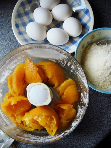Persian Orange Torte: Into The Food Processor