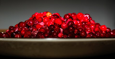 berry, red, frutti di bosco, produce, fruit, food, dessert, cranberry,