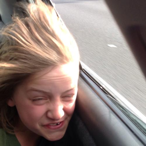 Car window hair