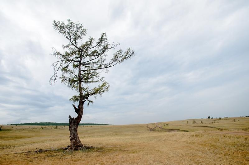20140808-Байкал_130