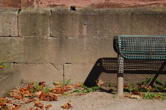 bench, shadow, dead leaves