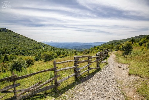canon virginia unitedstates hiking trail f11 24105 mouthofwilson ef24105mmf4lisusm graysonhighlandsstatepark canoneos5dmarkii