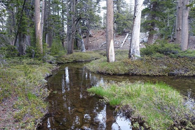 Pretty stream, mile 1001