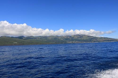 Azores2014_0385