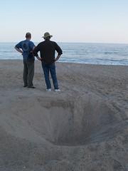 Turtle nest hole