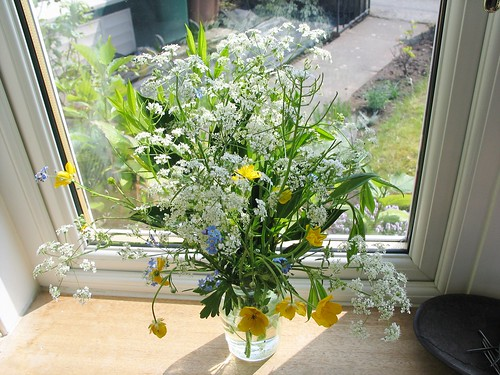 Wildflowers in my window