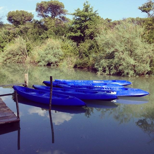 Canoe a rimessa #viaggioinromagna #igersfc #igersra #giriingiro #milanomarittima