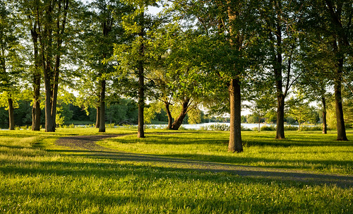 mississippiriver goldenhour riversidepark carletonplace tamron1750