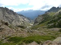 Descente du versant Est de Bocca di Guagnarola vers la vallée du Golu