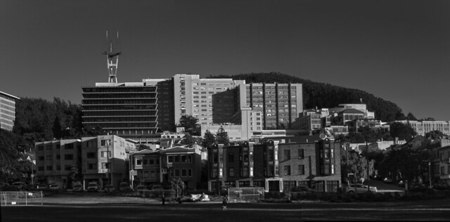 at Kezar Triangle.  San Francisco (2014)
