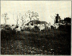 "Image from page 657 of ""St. Nicholas [serial]"" (1873)"