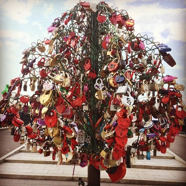 Arbre De L Amor Moscou Russia Moscow Mockba Love Flickr