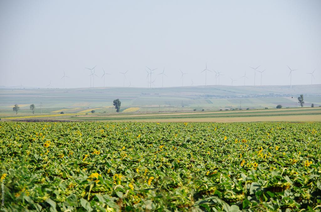 Dobrogea Region, Romania