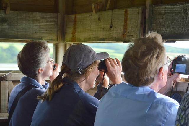 Lostwithiel U3A   at Walmsley Marsh Hides