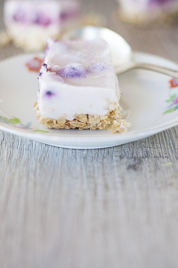 Frozen Yogurt Granola Bars