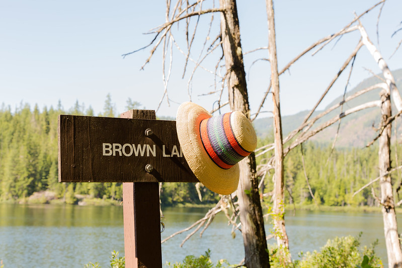 Brown Lake