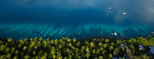blue beach coral high shadows turquoise lagoon pacificocean tropical kap reef motu ricohgr kiteaerialphotography coconutgrove frenchpolynesia fakarava autokap southpass pierrelesage raimiti danleighdeltar8 tetamanu kapfoil kapstock goprohero2 googleearthstyle hirifarabeach ralphbeutnagel