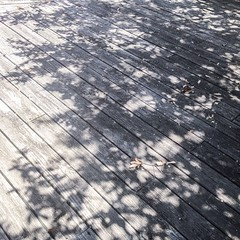 Day 16, #augustbreak2014, Down: This is a photo looking down on our deck at the partial shadow of our big oak tree.
