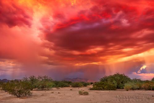 Arizona Intensity