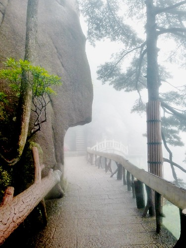 Anhui-Huangshan (132)