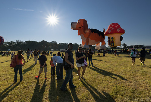 morning red sky dog sun sunlight mushroom field sunrise shadows crowd launch planoballoon