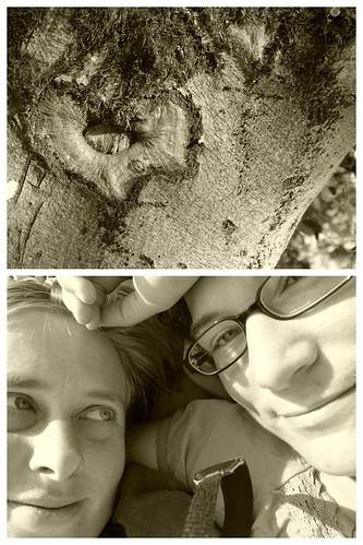 Hilles Babybauch und Co 2014-09-08