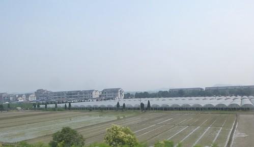Anhui-Hangzhou-Tunxi-bus (6)