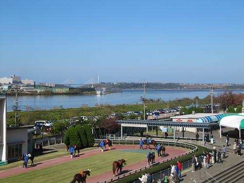 金沢競馬場のパドックの背後に広がる河北潟