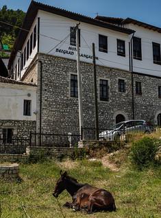 Albania 575_m