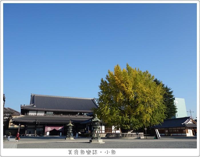 【日本旅遊】京都 西本願寺/元氣玉銀杏/秋季限定