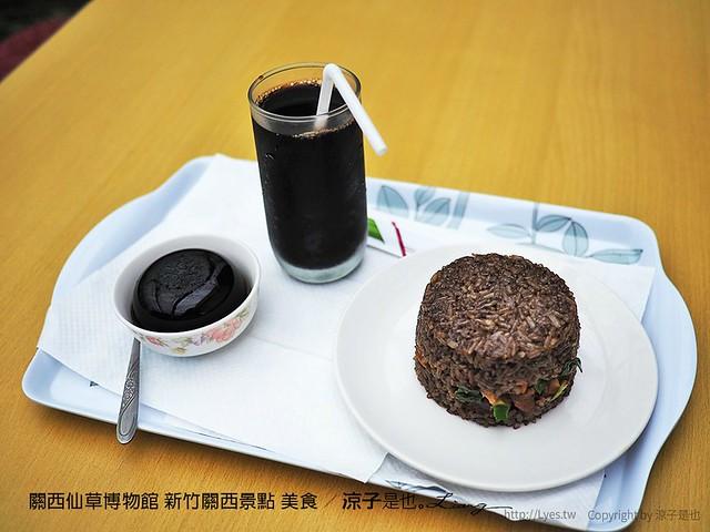 關西仙草博物館 新竹關西景點 美食 35