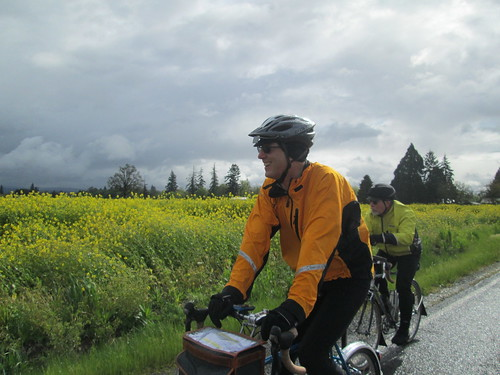 Riding by the mustard