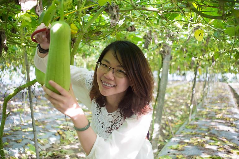 台南私藏景點--麻豆』庄腳囝仔ㄟ秘密基地&5012柚意思 (10)