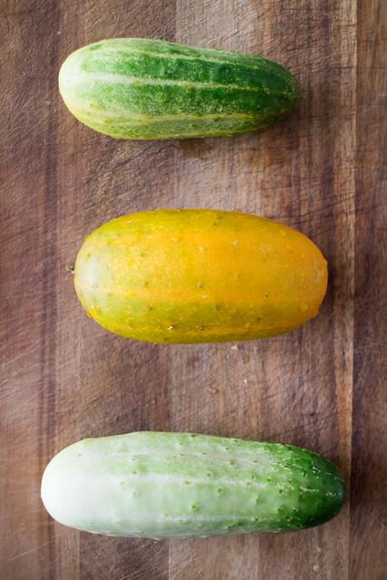 First Cucumbers