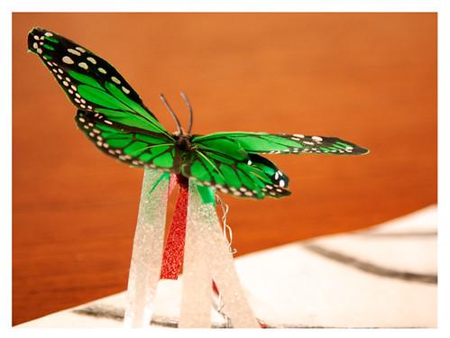 Breaking to Soar: Butterfly Detail