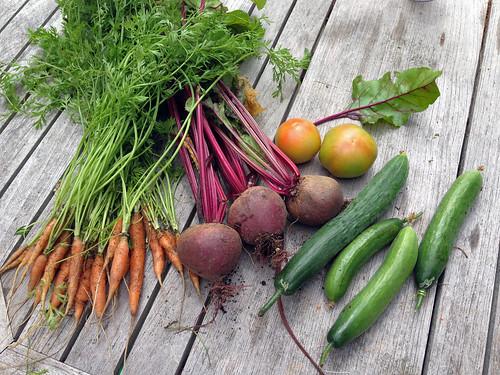 harvest 7-20-2014