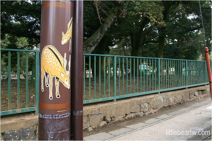 奈良公園-01