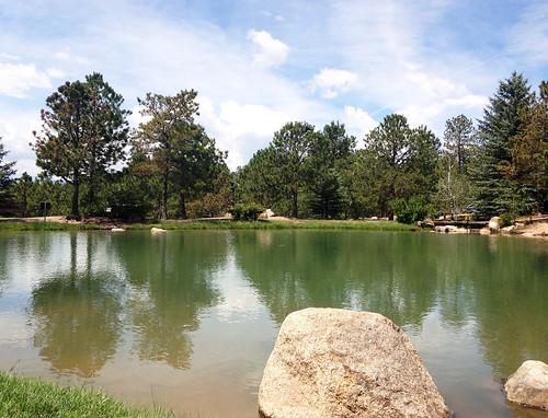 pond-4