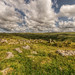 Tavy Cleave Dartmoor by tomkins2011