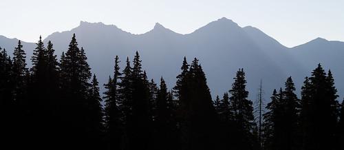 trees mountain mountains silhouette forest colorado unitedstates places backlit sanjuanmountains