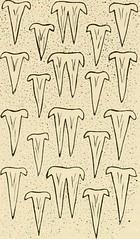 """Image from page 131 of """"Die Morphogenie der Primatenzähne : eine weitere Begründung und Ausarbeitung der Dimertheorie"""" (1914)"""