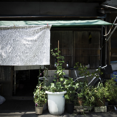 Shaded Garden Home with Bicycle, Kita Senju, Tokyo