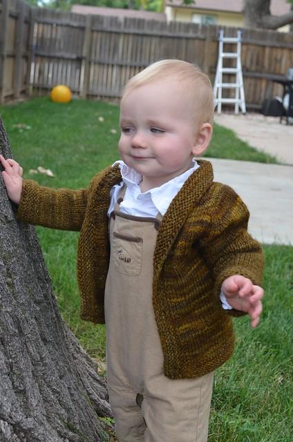 Derpy Hobbit
