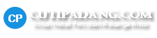 Logo Cutipadangcom