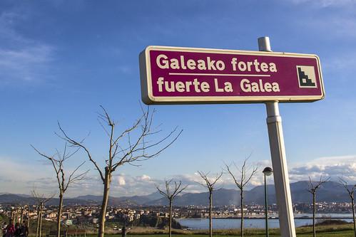 Fuerte de La Galea