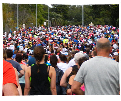 Perth City2Surf 2014