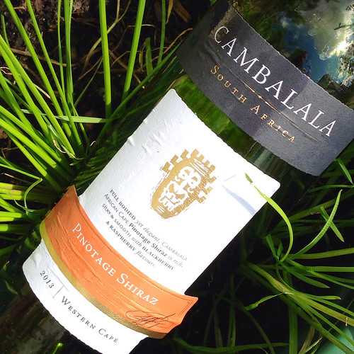 Cambalala. Pinotage Shiraz 2013. South African. Red wine.