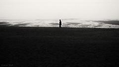 silence of silence